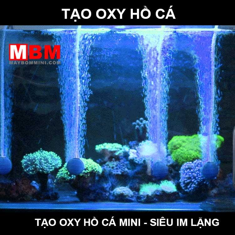 May Tao Oxy Ho Ca Canh
