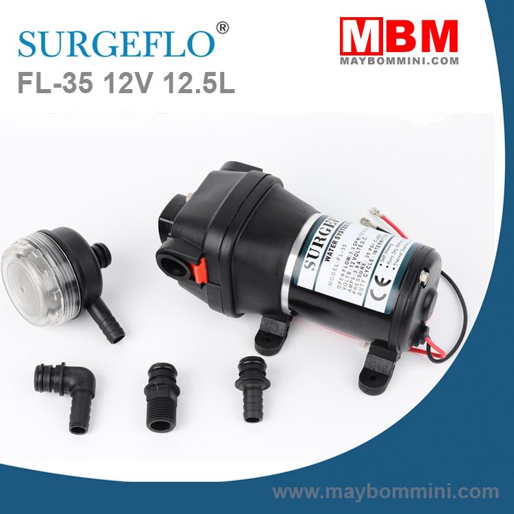 Bom Ap Luc Mini 12V FL 35