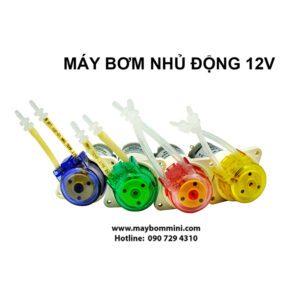 May Bom Nuoc Mini 12v