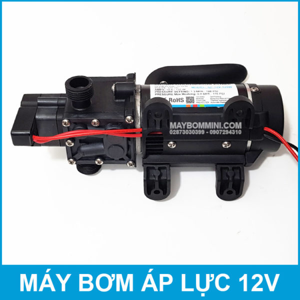 12 Volt Diaphragm Pump 120W 10L Smartpumps