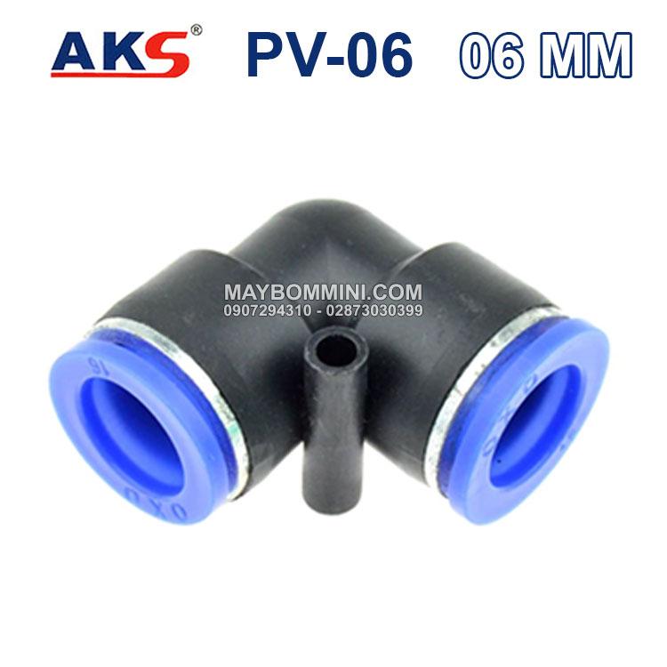 AKS PV 06