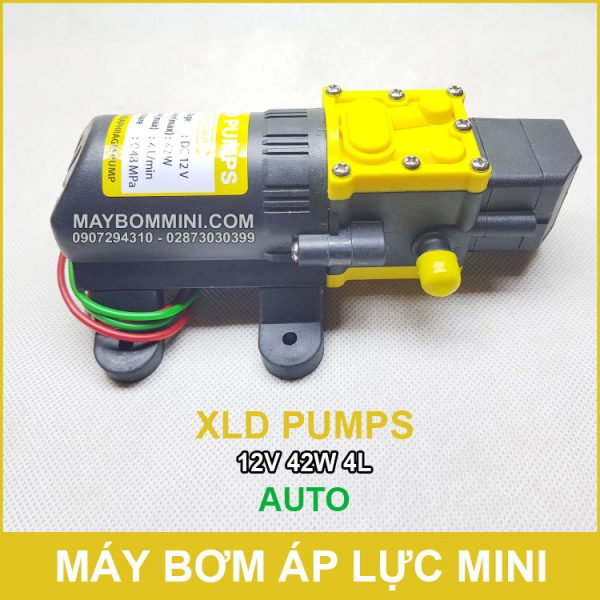 Ban May Bom Mini 12V Gia Re