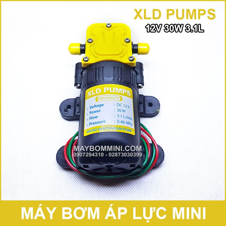 May Bom Ap Luc Mini 12V 30W XLD