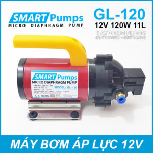May Bom Ap Luc Mini Smarpumps 12V 120W GL120