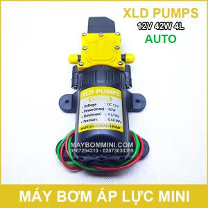 May Bom Mini 12V 42W 4L XLD Tu Dong