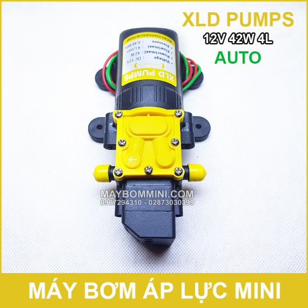 May Rua Xe Mini 12V 42W 4L XLD