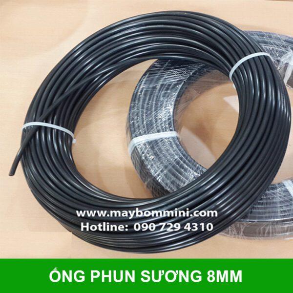Ong Phun Suong