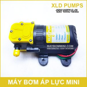 Ban Bom Nuoc Mini 12V 30W XLD