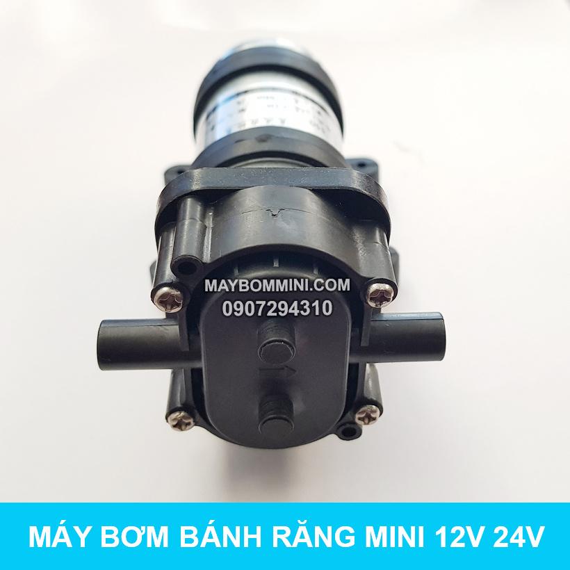 Bom Nuoc Mini Banh Rang 12v 24v