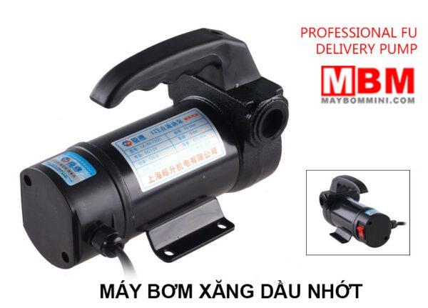 Bom Xang Dau Nhot 12v 24v.jpg
