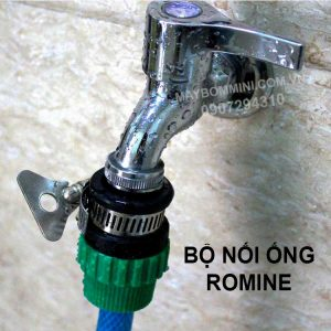 Gan Ong Voi Romine 1.jpg