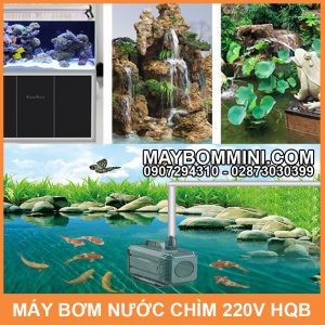 May Bom Nuoc Chim 220v Cao Cap
