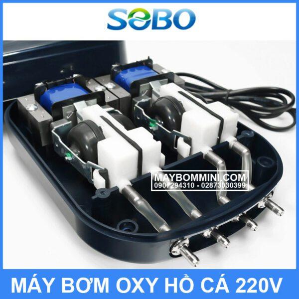 May Tao Oxy Be Ca