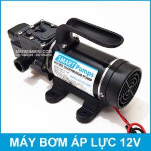 Micro Diaphragm Pump Smarpumps 12V 120W FS YD