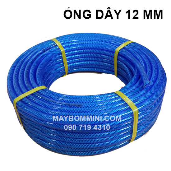 Ong Day 2 Lop 12mm.jpg