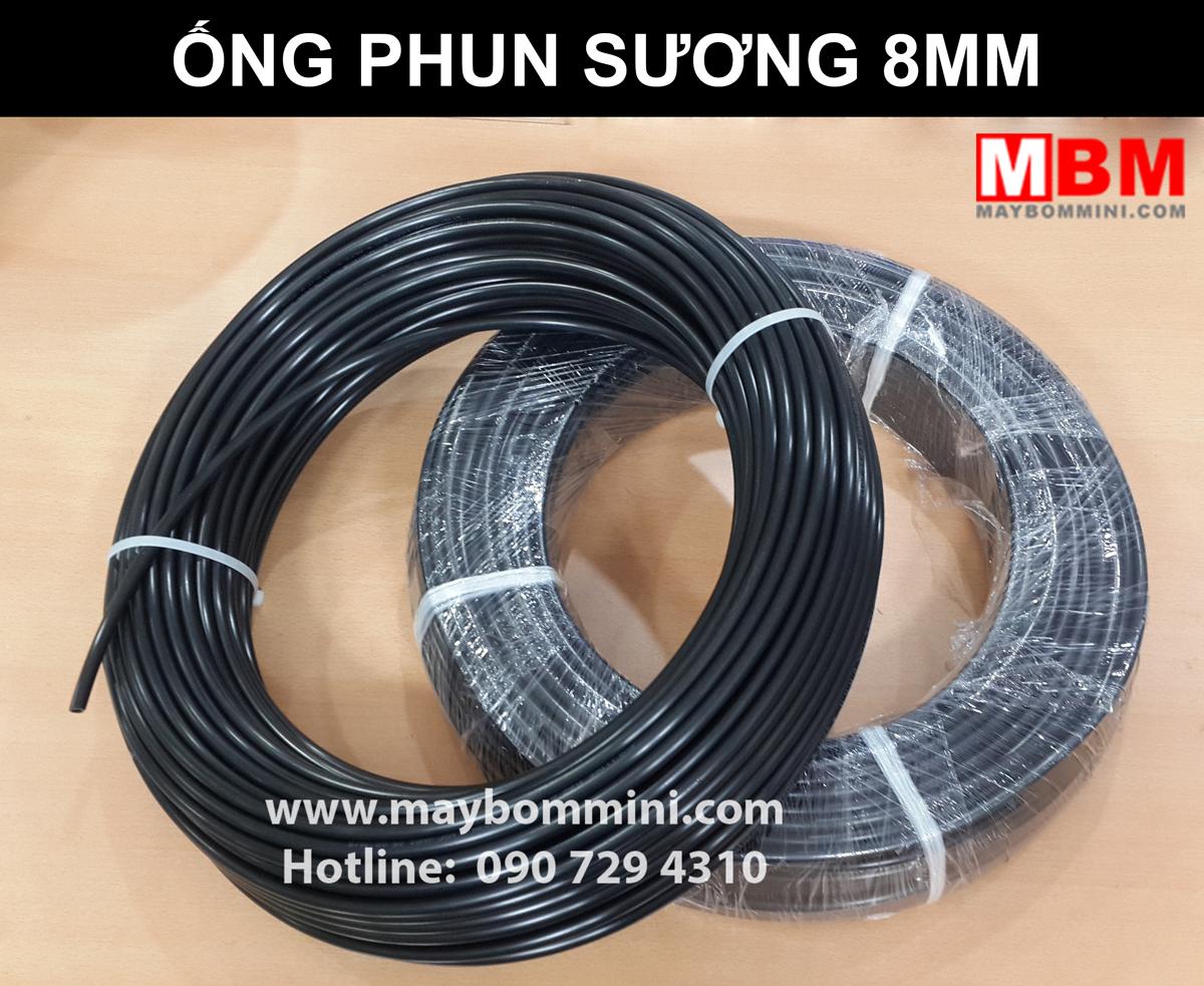 Phun Suong Ong Day.jpg