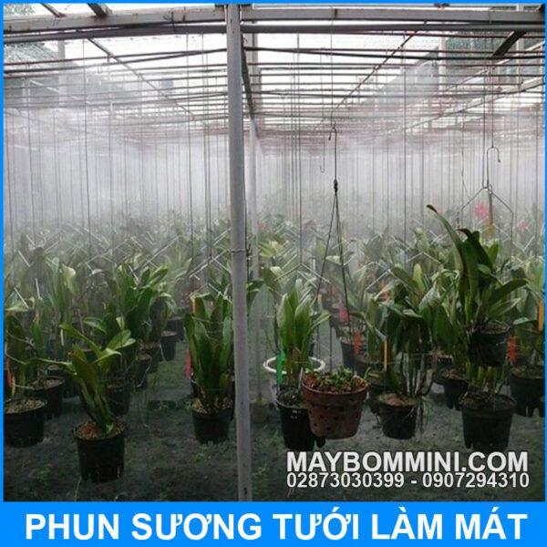 Phun Tuoi Lan
