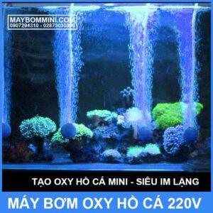 Tao Oxy Ho Ca Mini