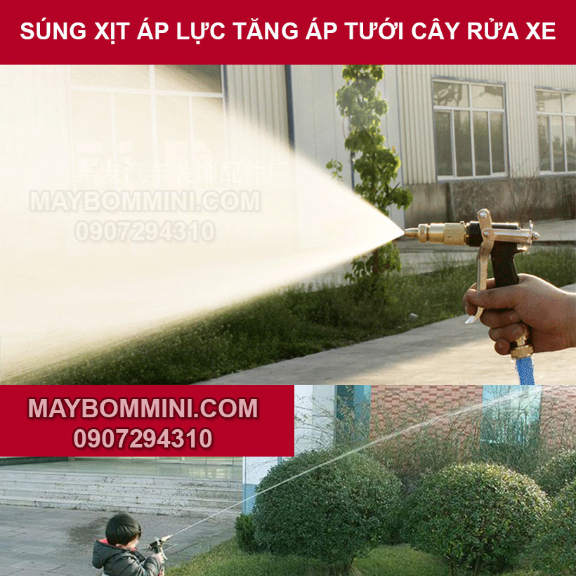 Sung Xit Tang Ap Rua Xe Tuoi Cay