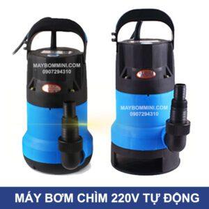 Bom Nuoc Tu Dong Ho Ca Ho Boi