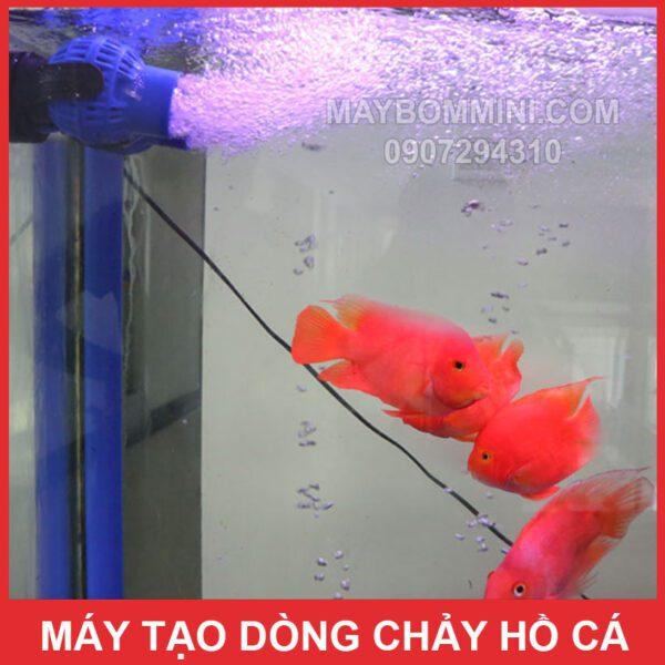 Tao Tao Song Ho Ca