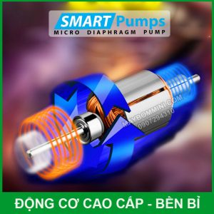 Dong Co May Bom Ap Luc Mini 12v 80w