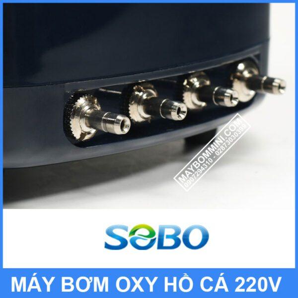 Dau Bom Oxy Ho Ca
