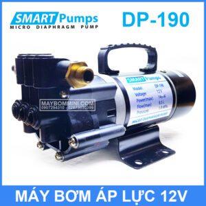 May Bom Smartpumps DP190