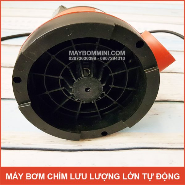 Cau Tao May Bom Chim