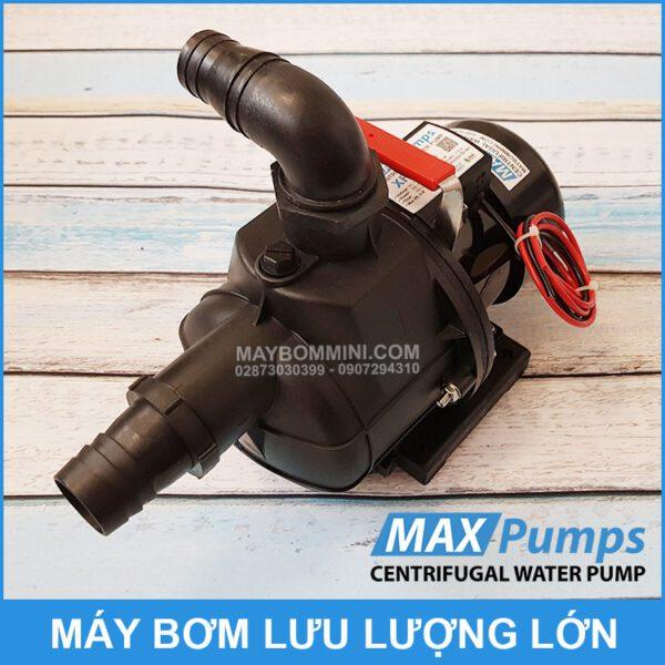 May Bom Ly Tam 12V Lu Luong Lon