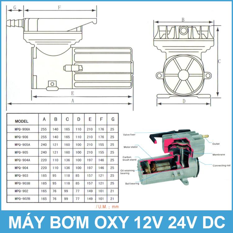 Kich Thuoc May Bom Oxy 12v 24v DC
