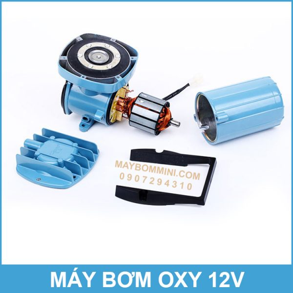 May Oxy 12v 24v DC Binh Ac Quy