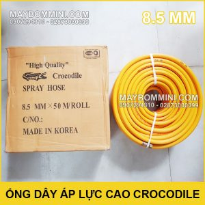 Ong Day Ap Luc Cao Crocodile 8.5mm