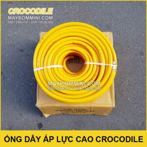 Ong Ap Luc Cao Crocodile