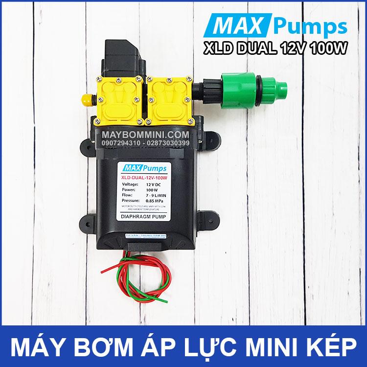 May Bom Mini Kep 12V 100W