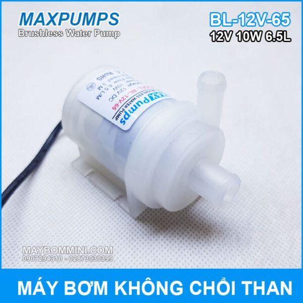 May Bom Nuoc Mini Khong Choi Than 12V 10W Maxpumps